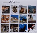"Kalender ""Cats"" 2022_"