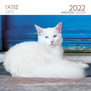 "Kalender ""Cats"" 2022"